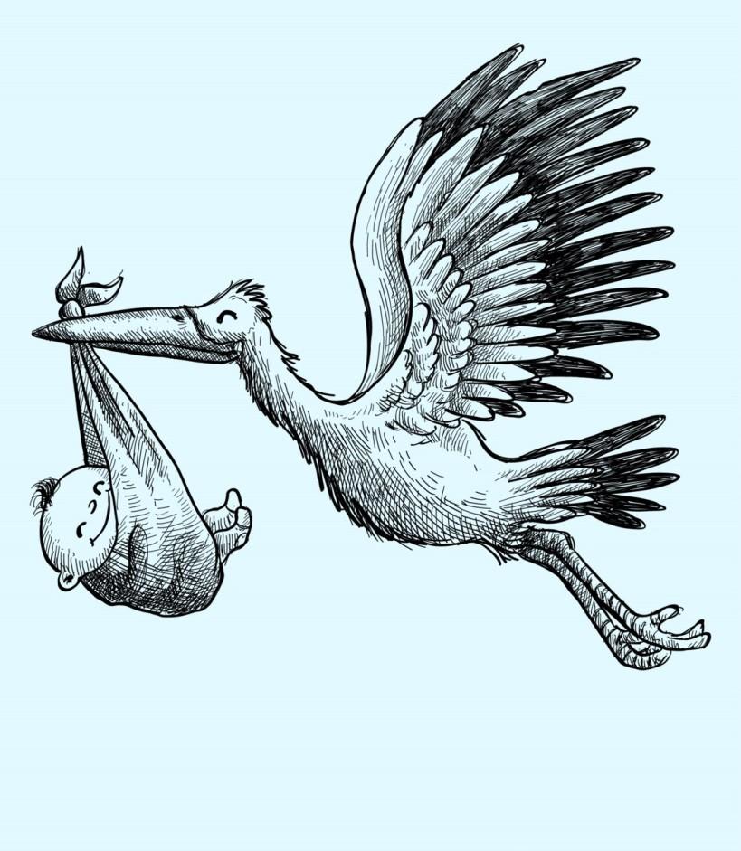 nascimento filho, gravidez, parto